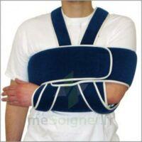 Bandage Immo Epaule Bil T2 à COLIGNY