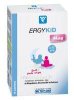 Ergykid Mag Poudre Solution Buvable 14 Sachets à COLIGNY