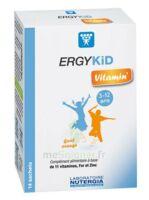 Ergykid Vitamin' Poudre Solution Buvable 14 Sachets à COLIGNY