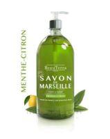 Beauterra - Savon De Marseille Liquide - Menthe/citron 1l à COLIGNY