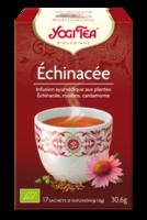 Yogi Tea Echinacee à COLIGNY
