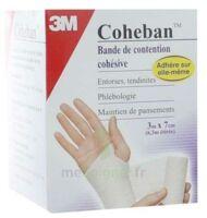 Coheban, Blanc 3 M X 7 Cm à COLIGNY