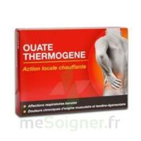 Thermogene Ouate, Bt 60 G à COLIGNY