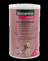 Biocanina Lait Poudre Maternisé B/400g à COLIGNY