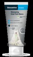 Biocanina Shampooing éclat Poils Blancs 200ml