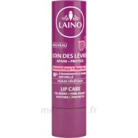 Laino Stick Soin Des Lèvres Figue 4g à COLIGNY